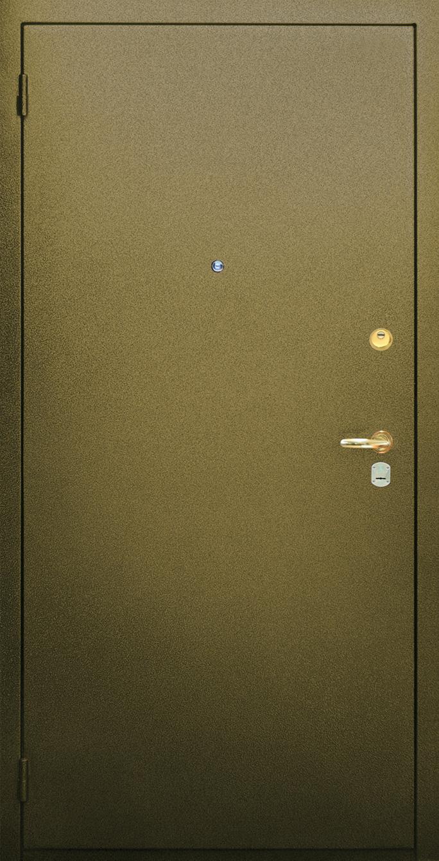 входная металлическая дверь порошковое